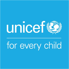 UNICEF, NGO boosts Niger healthcare with N31m –Official